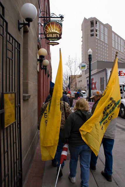 Boise Idaho Tea Party - Gadsden Flags