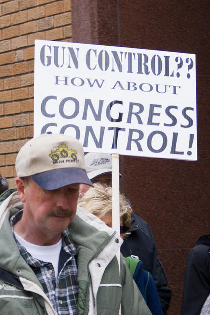 Boise Idaho Tea Party - Gun Control - How About Congress Control