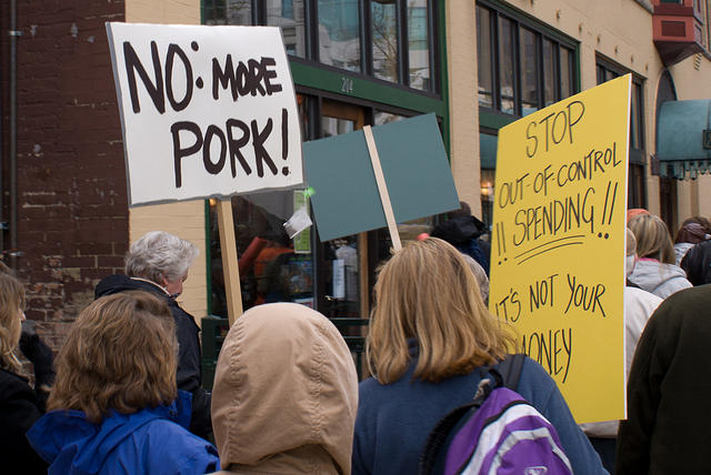 Boise Idaho Tea Party - No More Pork