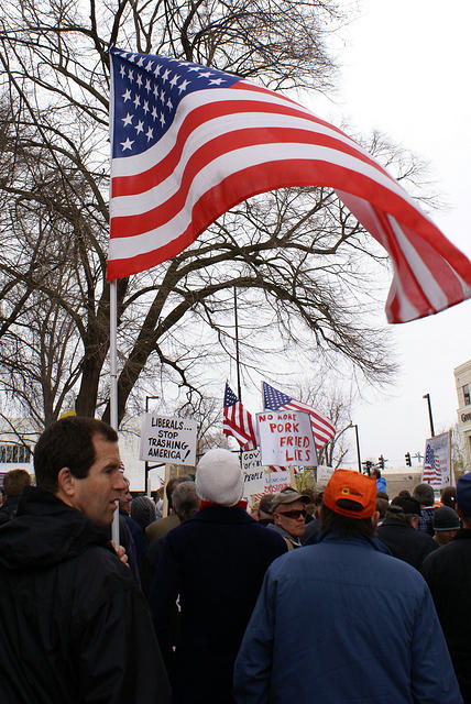 Boise Idaho Tea Party - American Flag Blowing in the Breeze