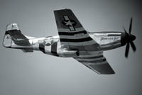 P-51 Mustang 'Glamorous Gal' - Black and White