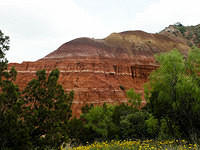 A Cliff in Palo Duro Canyon Through Trees
